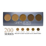 Cinema Secrets Ultimate Foundation 5-in-1 Pro Palette - 200 Series